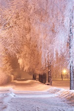 Preview iPhone wallpaper Winter, park, trees, snow, path, bench, night, lights