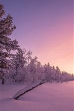 미리보기 iPhone 배경 화면 겨울, 설, 나무, 황혼, 일몰