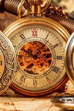 Preview iPhone wallpaper Antique pocket watch