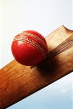 Preview iPhone wallpaper Ball, cricket, hand