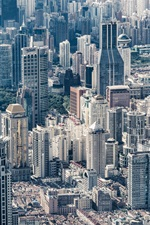 China, city, Shanghai, skyscrapers, buildings