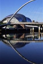 Preview iPhone wallpaper City, bridge, ferris wheel, buildings, river, water reflection