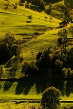Preview iPhone wallpaper Germany, Baden-Wurttemberg, trees, houses, grass, sunlight