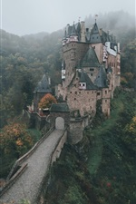 Preview iPhone wallpaper Germany, castle, autumn morning, fog, forest, trees