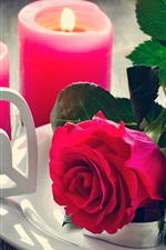 Rosa vermelha, velas, corações do amor