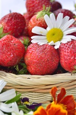 Preview iPhone wallpaper Red strawberry, berries, basket, white daisies