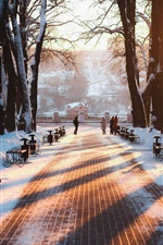 Preview iPhone wallpaper Russia, Kaluga, winter, park, snow, bench, trees, sunrise