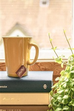 Preview iPhone wallpaper Still life, books, cup, plants, window