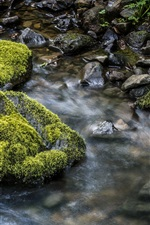 Preview iPhone wallpaper Stream, water, stones, moss