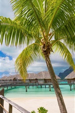 Preview iPhone wallpaper Tropical, resort, palm trees, paradise, huts, sea, beach