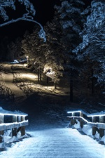 Preview iPhone wallpaper Winter park at night, snow, trees, wood stairs, lights, illumination