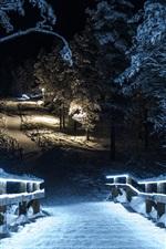 Winter park at night, snow, trees, wood stairs, lights, illumination