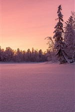 Preview iPhone wallpaper Winter, thick snow, trees, sunset