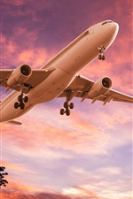 Preview iPhone wallpaper Airplane, take off, dusk, sunset, clouds, silhouettes