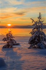 Preview iPhone wallpaper Arvika, Sweden, winter, snow, trees, sunset