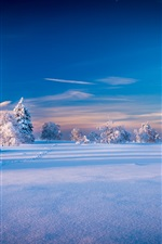 Preview iPhone wallpaper Beautiful winter landscape, trees, spruce, snow
