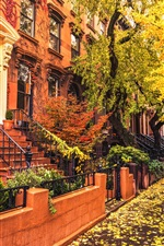 Preview iPhone wallpaper Brooklyn, city, houses, sidewalk, autumn, trees, leaves, rain, USA
