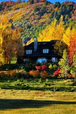 Preview iPhone wallpaper Colorful autumn, trees, yellow and red leaves, house