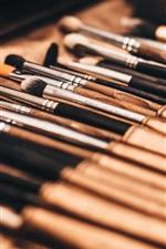 Cosmetics set, brushes close-up