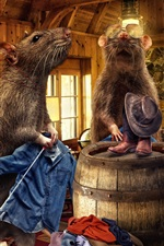 Preview iPhone wallpaper Creative pictures, rats, jeans, room