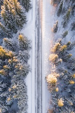 Preview iPhone wallpaper Forest, trees, top view, snow, road, winter