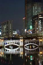Fukuoka, Japan, night, city, skyscrapers, river, bridge, lights