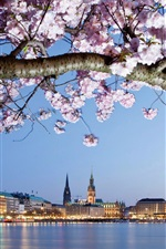 Preview iPhone wallpaper Germany, Hamburg, flowers, river, city, houses, lights