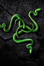 Preview iPhone wallpaper Green snake, rocks