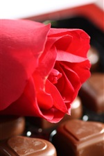 Preview iPhone wallpaper Red rose and chocolate candy