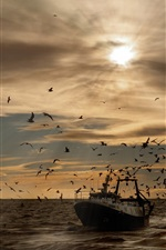 Preview iPhone wallpaper Seabirds, seagulls, ship, sea, waves, sunset
