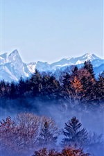 Preview iPhone wallpaper Trees, mountains, autumn, fog, dawn