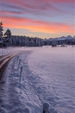 미리보기 iPhone 배경 화면 겨울, 도로, 나무, 두꺼운 눈, 일몰