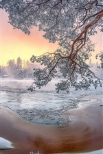 Preview iPhone wallpaper Winter scenery, snow, trees, white world