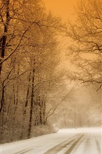 Winter, snow, trees, road, dusk