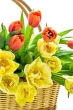 Preview iPhone wallpaper Yellow and red tulips, basket, white background