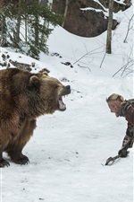 Bear and man face to face, winter, snow