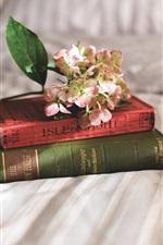 Books, flowers, bed, still life