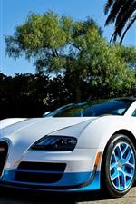 Bugatti Veyron supercar, white and blue, palm trees
