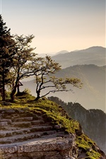 Preview iPhone wallpaper Cliff, mountains, trees, grass, rocks, morning