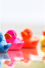 Preview iPhone wallpaper Colorful duck toys in water