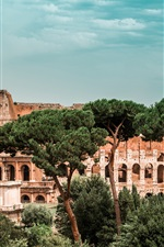 Preview iPhone wallpaper Colosseum, Italy, trees, world ruins