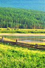 Preview iPhone wallpaper Fence, grass, trees, forest, pond
