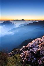 Preview iPhone wallpaper Flowers, mountains, clouds, summer