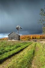 Grama, campo, estrada, woodhouse, moinho de vento