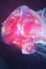 Jellyfish, pink color, black background