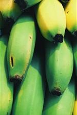 Many bananas, green and yellow