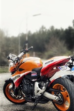 Preview iPhone wallpaper Orange and blue motorcycles
