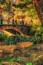 Park, trees, bridge, grass
