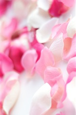 Preview iPhone wallpaper Pink rose petals, romantic