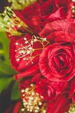 Preview iPhone wallpaper Red roses bouquet, flowers close-up